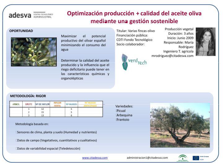 Poster Optimización Oliva